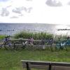 【初ツーリング】三宅島サイクリングの旅